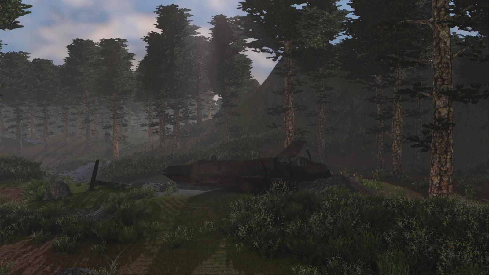 neergestort vliegtuig in game footage
